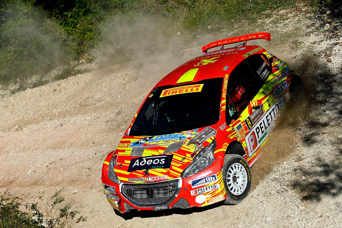 Argento di giornata per Paolo Andreucci e Rudy Briani Peugeot 208 T16 R5